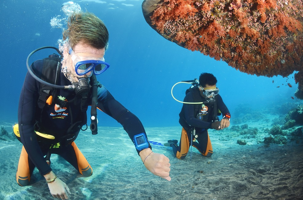 Jorn-WERDELIN-Diving-with-Cipto