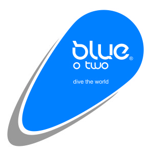 blue o two logo
