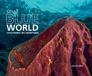 Small Blue World cover