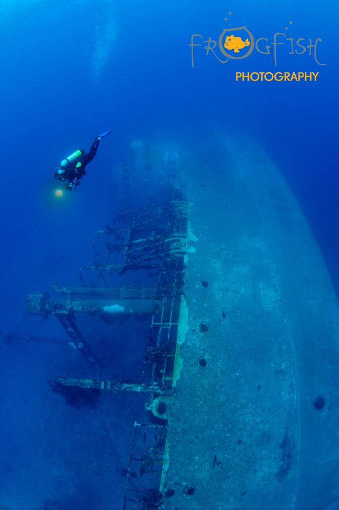 artificial reef dives