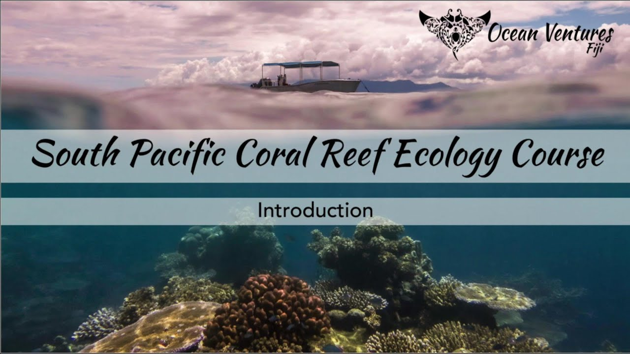 Ocean Ventures Fiji Launches Cutting-Edge Coral Reef Ecology Course