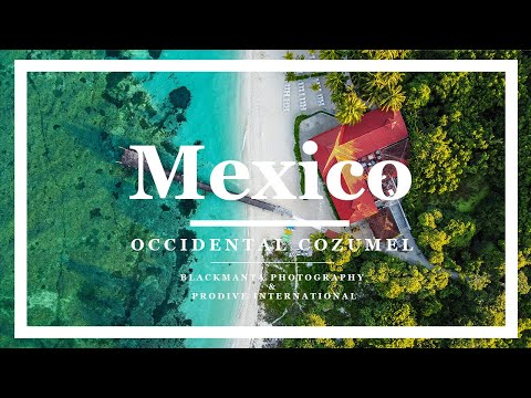 Scuba Diving in Mexico: Diving with Pro Dive International from the Occidental Cozumel Hotel (Watch Video)