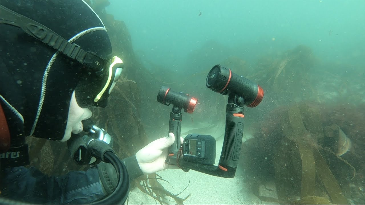 Equipment Review: SeaLife Micro 3.0 Camera and Sea Dragon 2500F Lights (Watch Video)