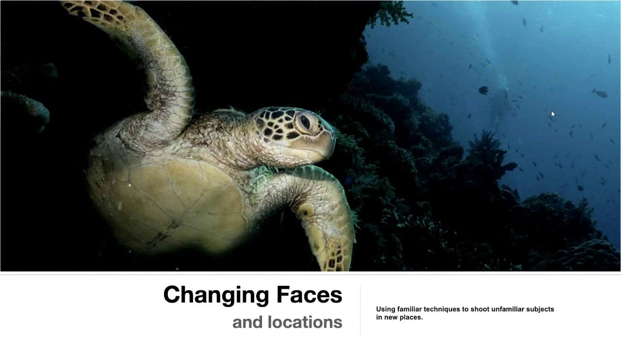 Mario Vitalini: Changing Faces at the August NUPG meeting (Watch Video)