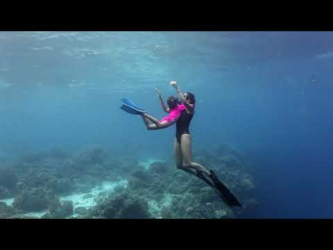 New Series: Dive Philippines – Part 3 (Watch Video)