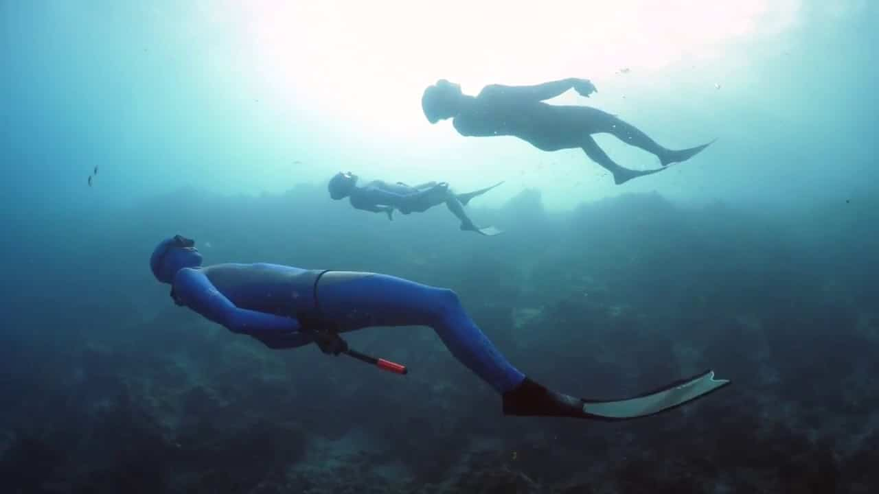 New Series: Dive Philippines – Part 1 (Watch Video)