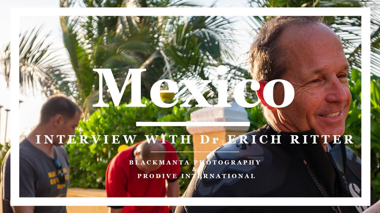 Scuba Diving in Mexico: Exclusive Interview with Dr Erich Ritter | Shark Expert (Watch Video)