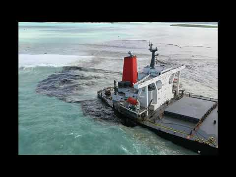 The Wakashio Oil Spill in Mauritius – a report from Jill Holloway