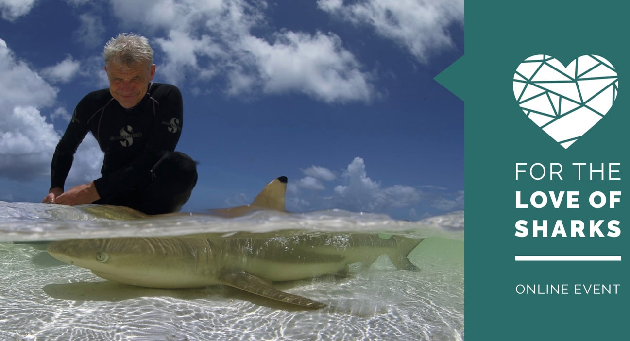 Love_of_sharks_event_1600x700_web