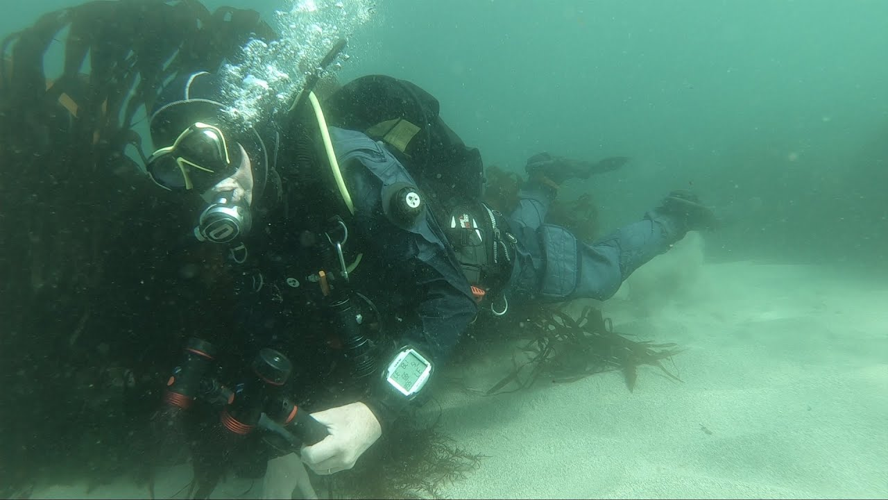 Equipment Review: AVATAR Drysuit and AVATAR 901 Undersuit (Watch Video)