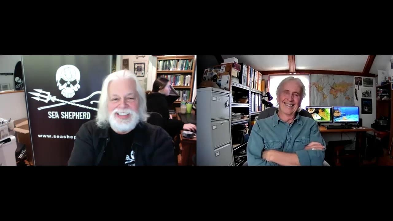 Jeff chats to… Paul Watson Founder of the Sea Shepherd Conservation Society – Part 1 (Watch Video)
