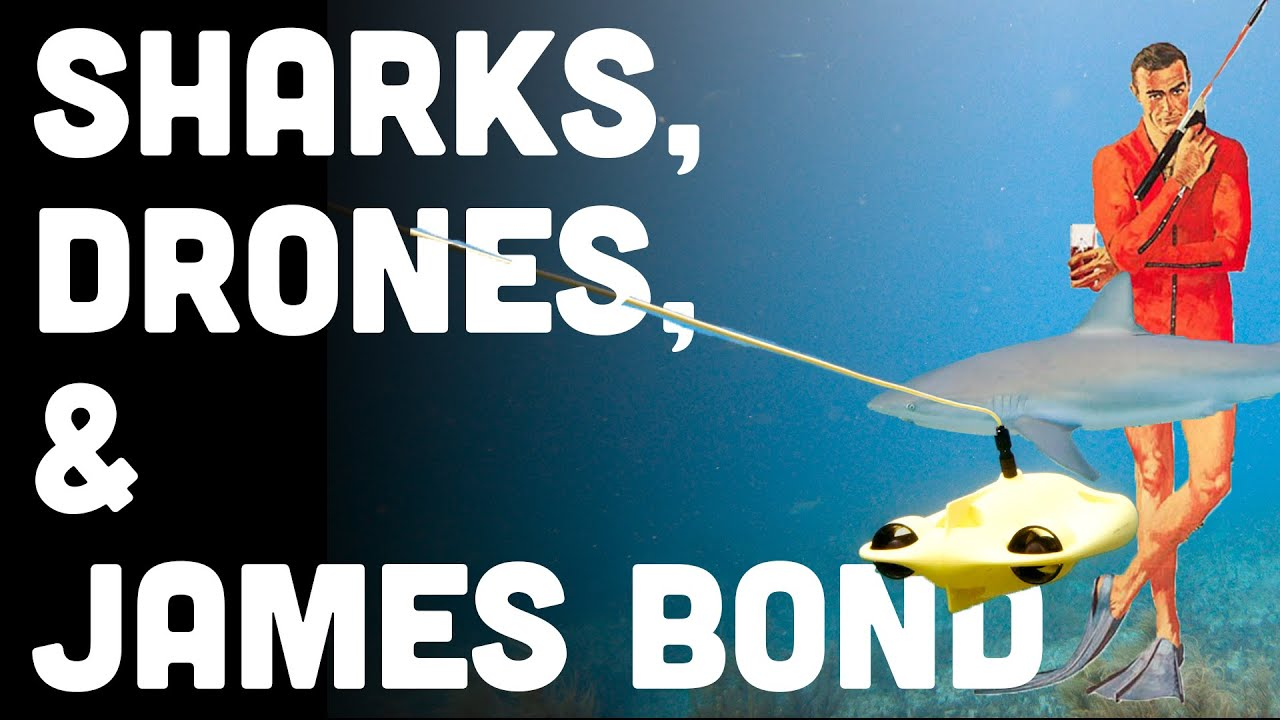 Sharks Check Out 4K Underwater Drone – Chasing Gladius Mini Review (Watch Video)