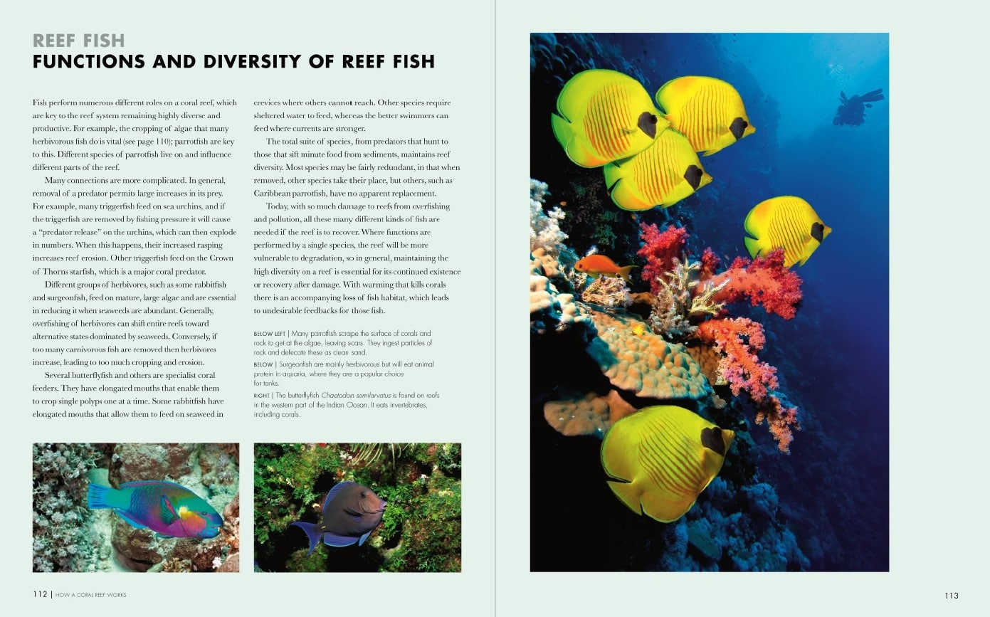 Coral Reefs p112-113
