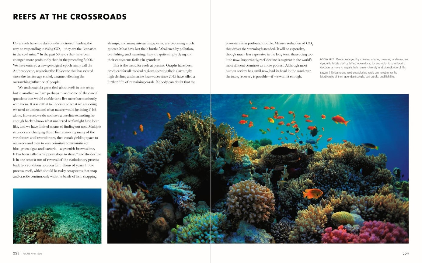 Coral Reefs p228-229