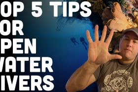 5-Tips-For-New-Open-Water-Scuba-Divers.jpg