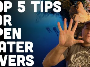 5 Tips For Beginner Open Water Scuba Divers (Watch Video)