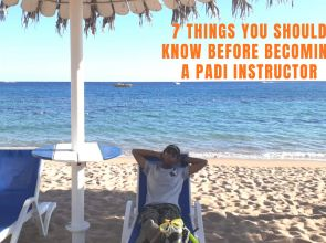 7 Things YOU should know before becoming a PADI Instructor