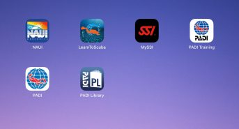 Apps-on-the-iPad-header.jpg