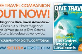 DIVE-TRAVEL-COMPANION-4-800x433_DTA2.jpg