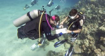 Deptherapy-Programme-Members-Andy-Searle-and-Jon-Beever-taking-part-in-a-coral-reef-surveying-and-conservation-course-at-Roots-Red-Sea.-Photo-Dmitry-Knyazev-for-Deptherapy.jpg