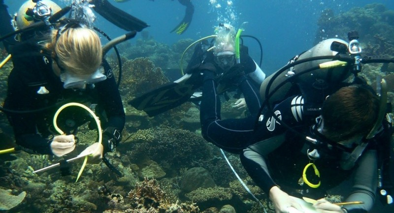 Divers-from-Coral-Cay-Conservation-undertaking-a-coral-reef-survey-in-the-Philippines.-Photo-Coral-Cay-Conservation.-1-e1526311270926.jpeg
