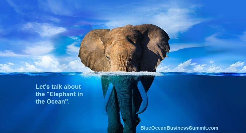 Elephant-Ocean-press-release-image-3.jpg