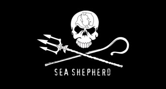 Sea-Shepherd-logo.jpg