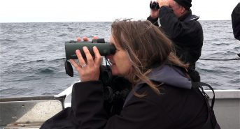 Seal-Survey-Trip-Sue-Sayer.jpg