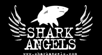 Shark-Angels.jpg