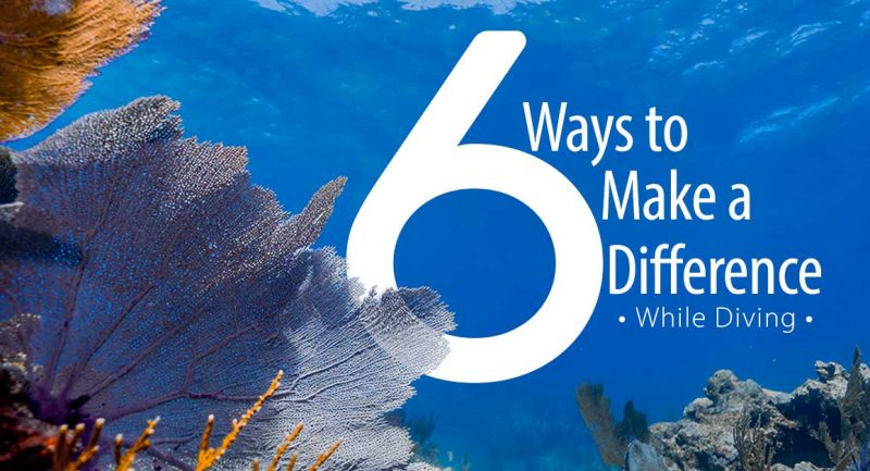 Six-Ways-to-Make-a-Difference-While-Diving_fb.jpg