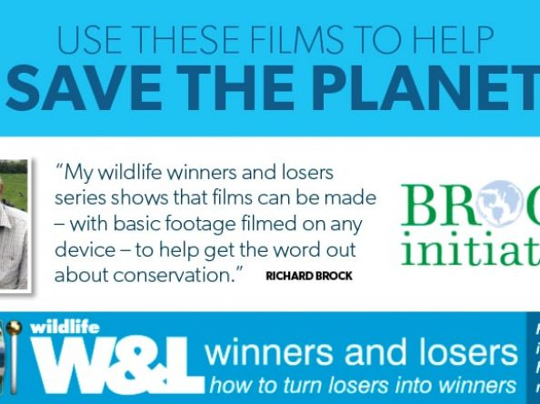 New Series: Wildlife Winners and Losers – Part 5 (Watch Video)