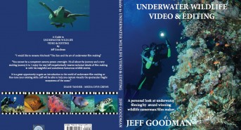 jeff-goodman-cover.jpg