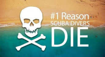 reasons-scuba-divers-diee.jpg