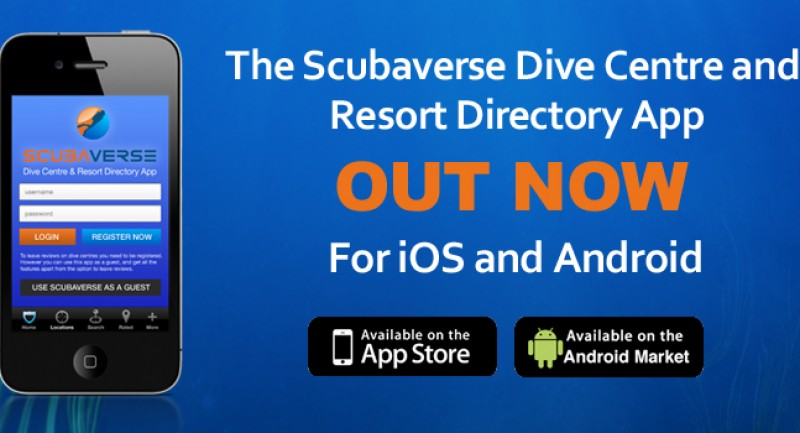 scubaverse-app-launch1.jpg