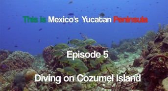 this-is-mexicos-yucutan-peninsul.jpg
